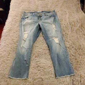 torrid Jeans - Distressed boyfriend Torrid Jean's size 16
